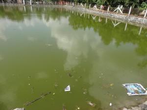 Schmutziges Wasser